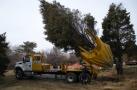 Big John Tree Transplanter 100D