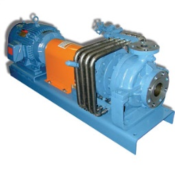 RMA5000 Series Magnetic Drive Air Cooled Process Pumps