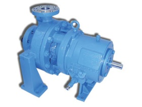 R4000 Series Heavy Duty Process Pumps
